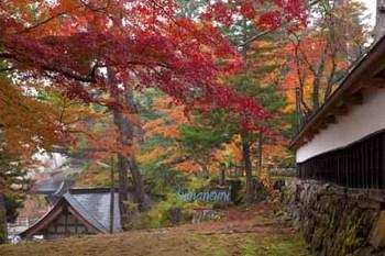 円蔵寺.jpg