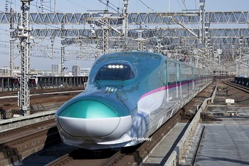 鉄道 埼玉県・はやぶさ3月11日.jpg